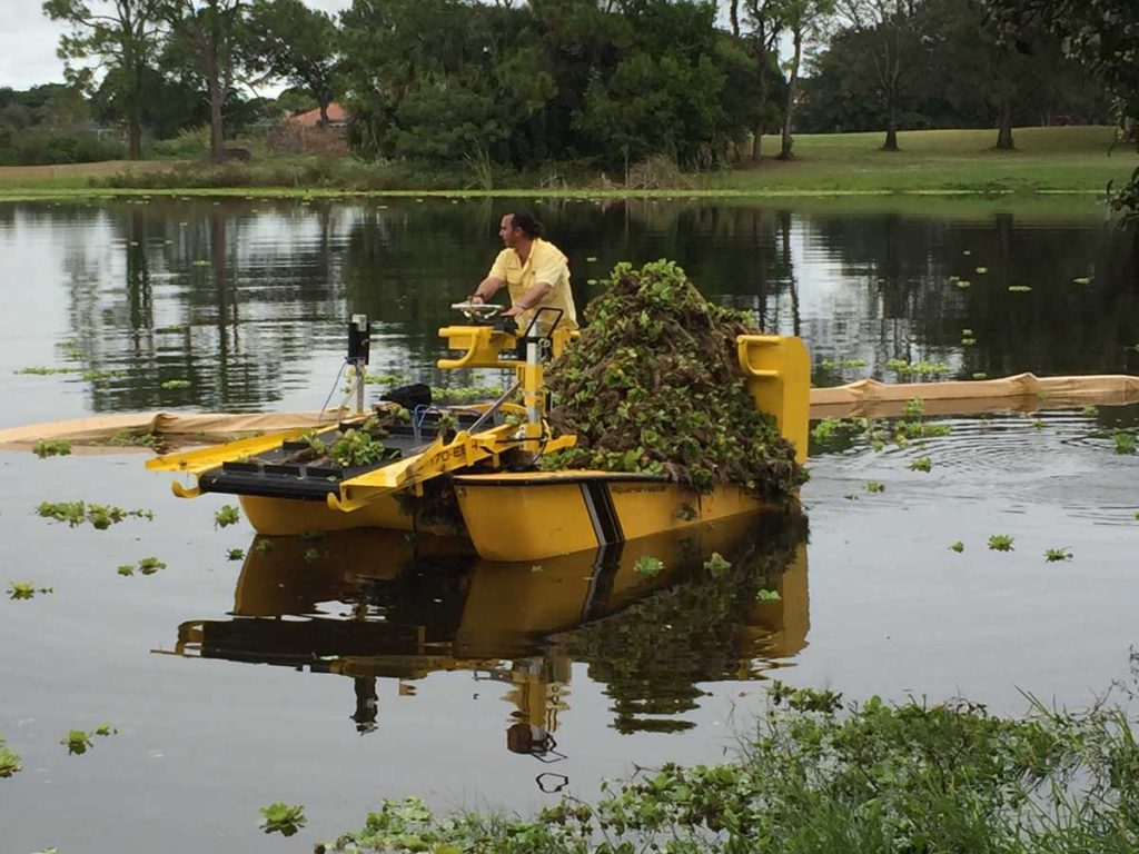 Pond Weed Control