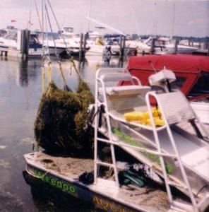 Weedoo cleaning marina