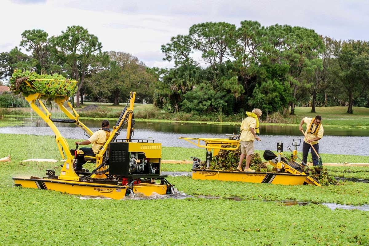 Aquatic Lake Weed Removal