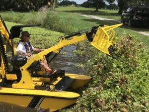 Pond Weed Removal