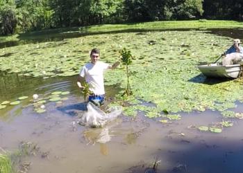 Lake Weed Removal
