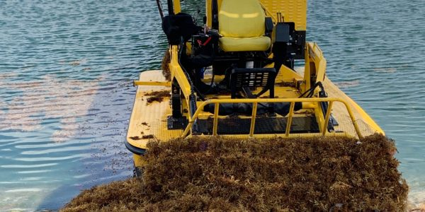 Weedoo seaweed removal